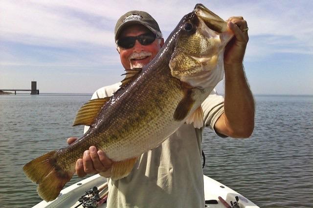 Photos view our terrific falcon lake photo gallery for Bass fishing texas
